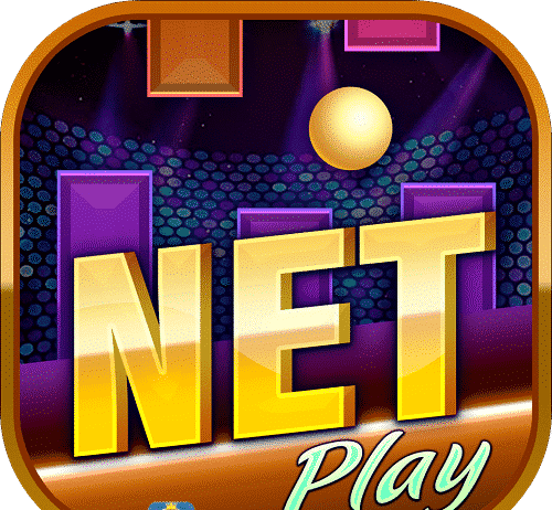 Netplay Club Logo