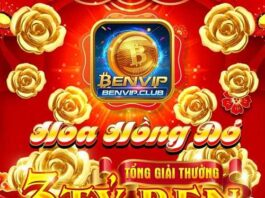 BenVip Club: Đua Top Ben 5 - Loan tin nhận Code